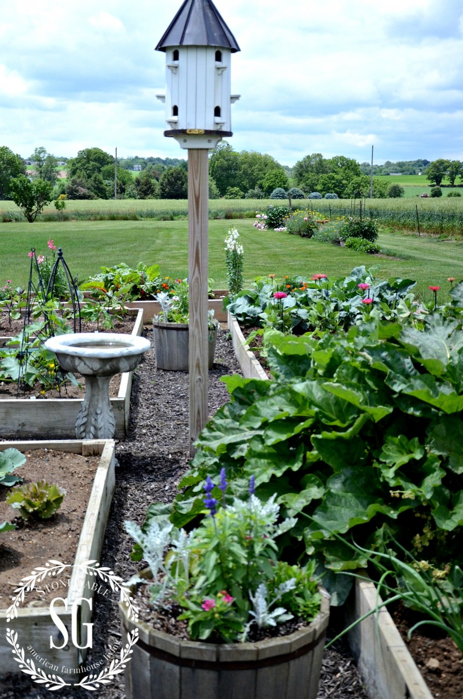StoneGable garden-first planted-stonegableblog.com