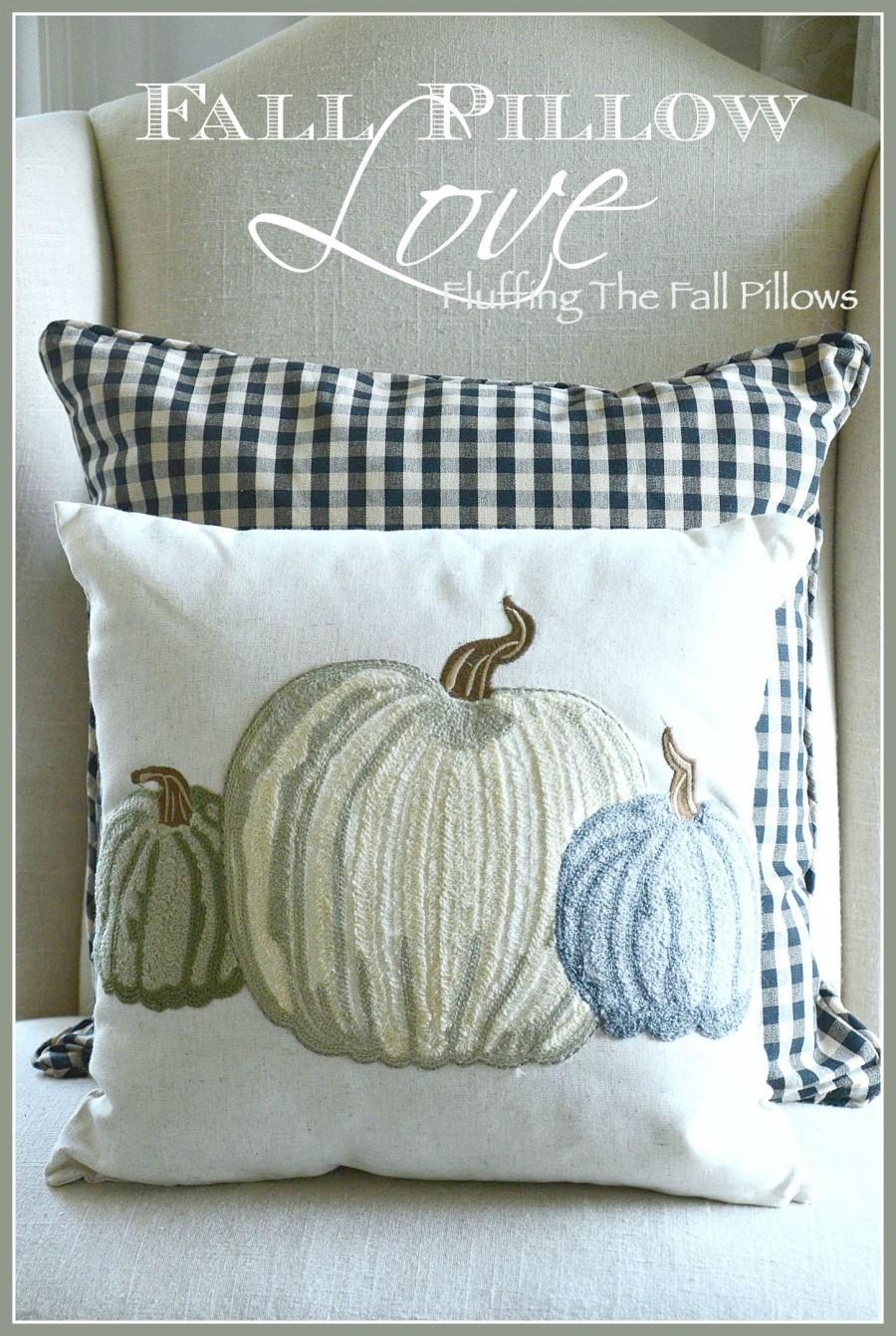 FALL PILLOWS-Enjoying the beauty of fall in your decor-stonegableblog.com
