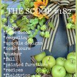 THE SCOOP #182