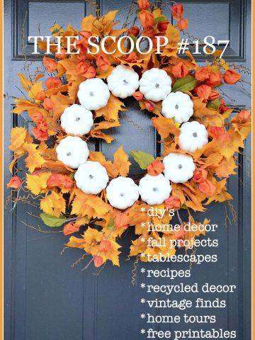 THE SCOOP #187
