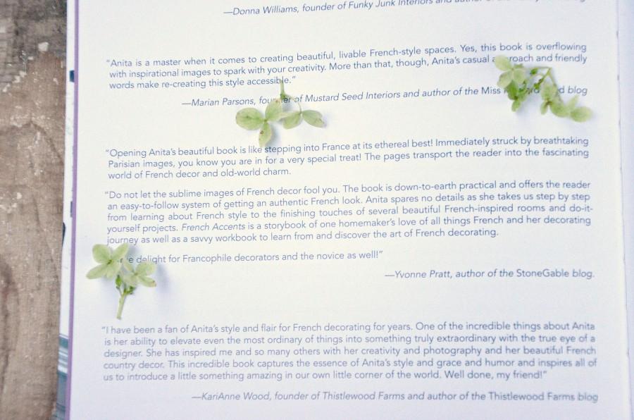 FRENCH ACCENTS- endorsements-stonegableblog.com
