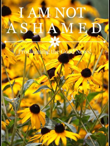 I AM NOT ASHAMED-Proclaiming the Good News To A Lost World-stonegableblog.com