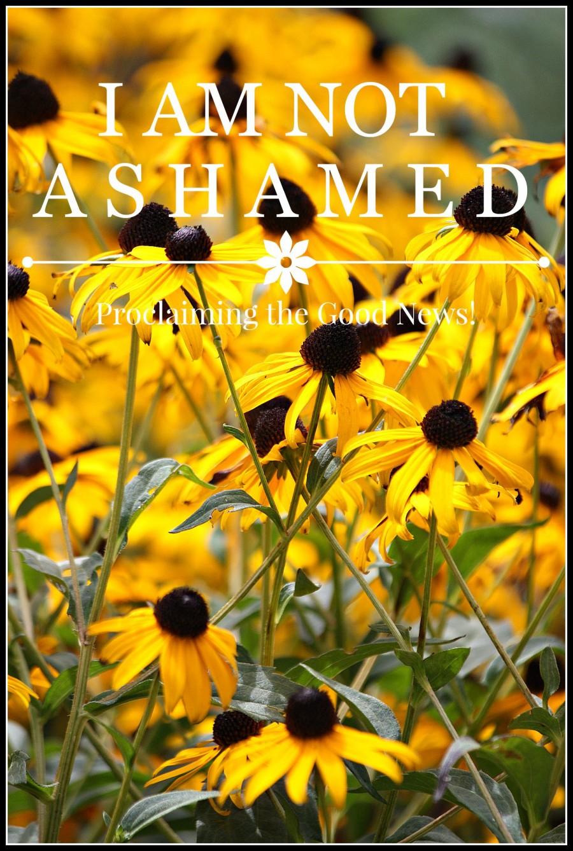 I AM NOT ASHAMED-Proclaiming the Good News To A Lost World-stonegableblog.com