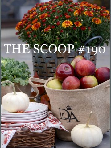 THE SCOOP #190-Hundreds of creative ideas for home and garden.-stonegableblog.com