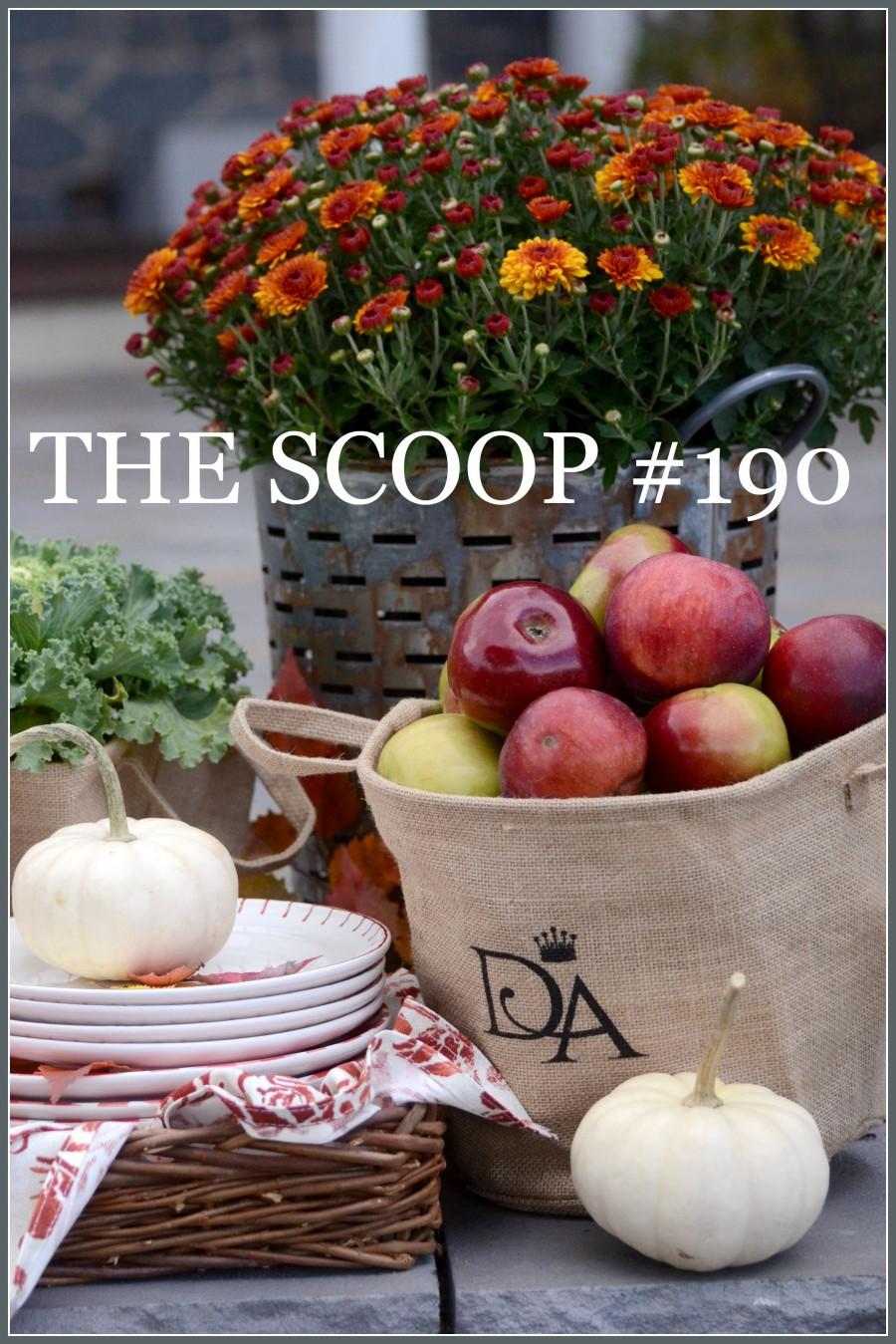 THE SCOOP #190-Hundreds of creative ideas for home and garden.-stonegableblog.com