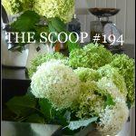 THE SCOOP #194