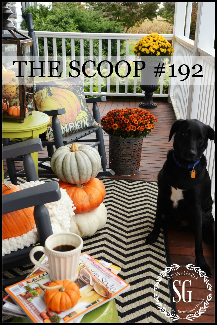 THE SCOOP #192- Hundreds of creative ideas from all over the web. Lots of fall ideas too