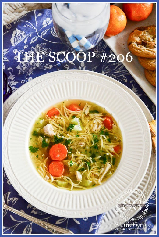 THE SCOOP #206-Hundreds of home and garden posts from the best blogs!