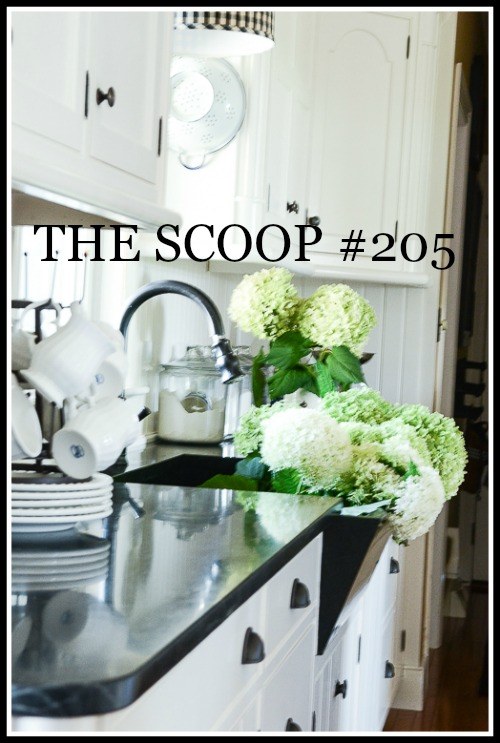 THE SCOOP- The best place to be if you love all things home and garden