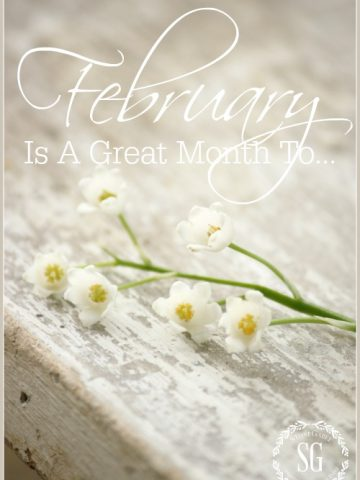 FEBRUARY IS A GREAT MONTH TO... Here's some fun, love-ly things to do this month.
