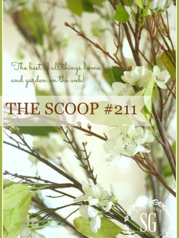 THE SCOOP #211