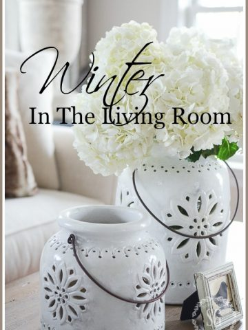 WINTER IN THE LIVING ROOM