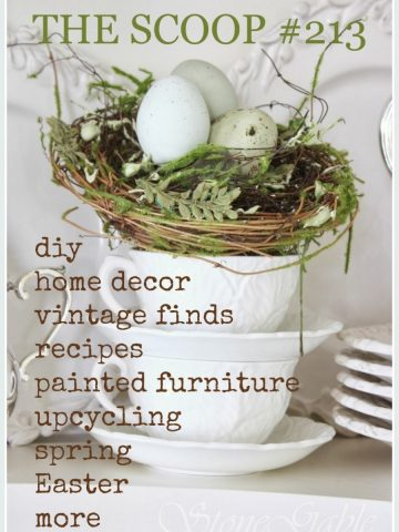 THE SCOOP #213. Hundreds of ideas for home and garden!