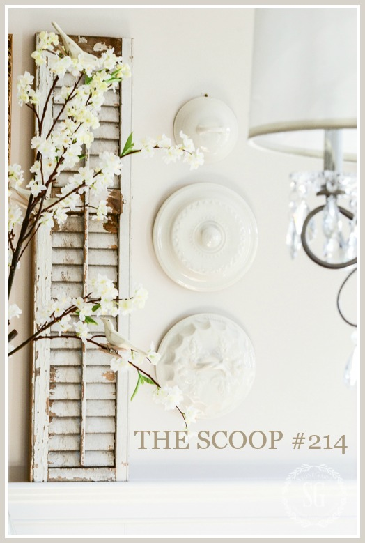 THE SCOOP #214- Hundreds of home and garden posts, ideas and inspiration!