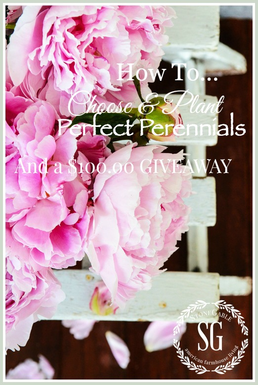 HOW TO CHOOSE AND PLANT PERFECT PERENNIALS-AND A $100.00 GIVEAWAY