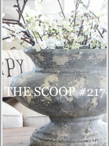 THE SCOOP #117