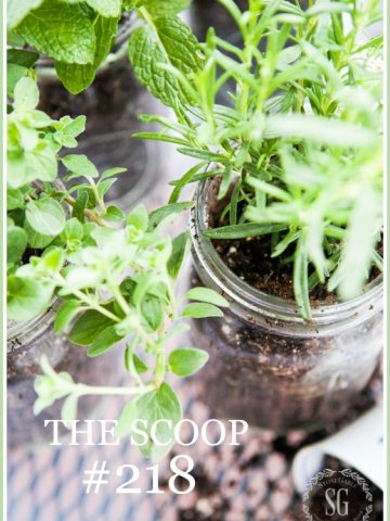 THE SCOOP #218-- Hundreds of home and garden post all in one place!