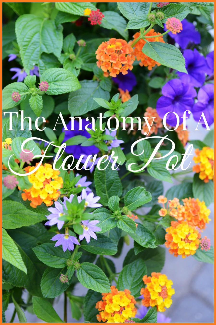 THE ANATOMY OF A FLOWER POT-HOW TO PLANT BEAUTIFUL BLOOMS TO LAST UNTIL FALL
