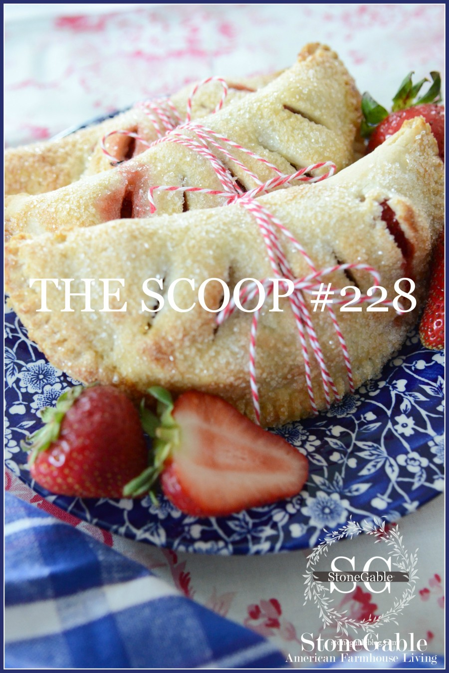 THE SCOOP #228- HUNDREDS OF THE BEST HOME AND GARDEN BLOGS