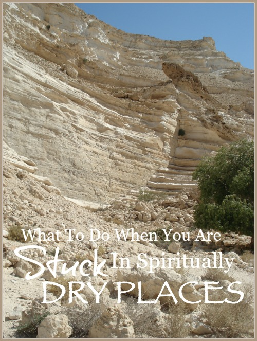WHAT TO DO WHEN YOU ARE STUCK IN SPIRITUALLY DRY PLACES- LESSONS FROM THE HOLY LAND