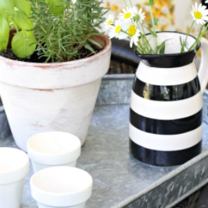 10 minute decorating idea with diy whitewashed planters!