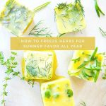 herb and olive oil cubes
