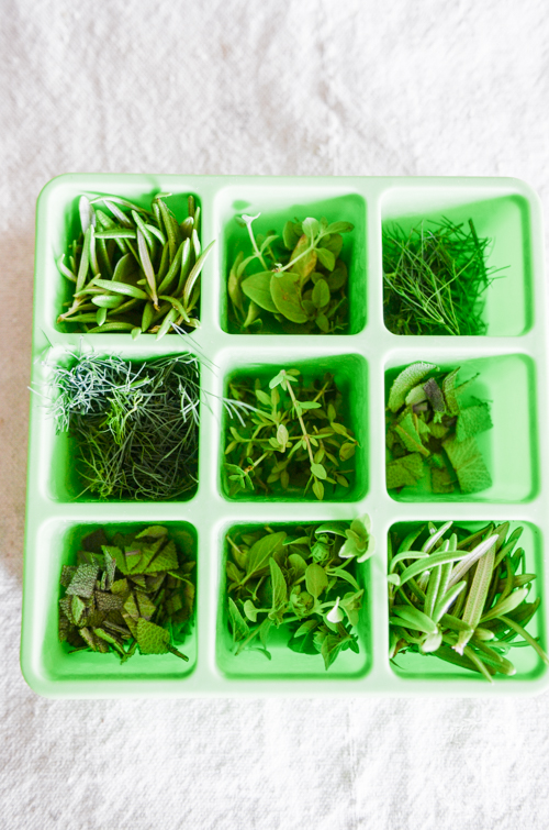 FREEZING HERBS-Saving the freshness of summer. Not only delicious, but budget-wise!