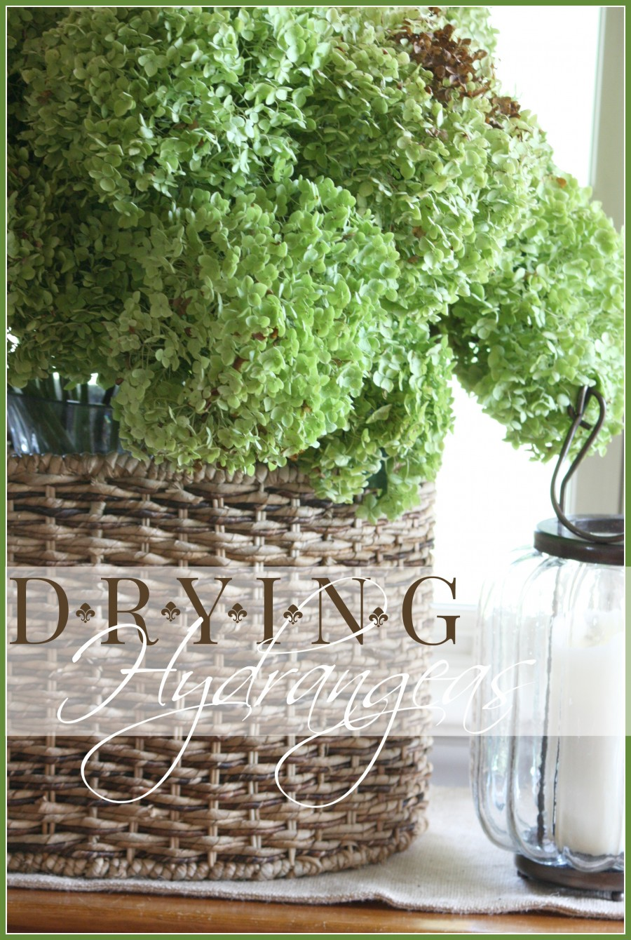 DRYING HYDRANGEAS- an easy step-by-step process- stonegableblog