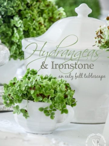 GREEN HYDRANGEAS AND IRONSTONE