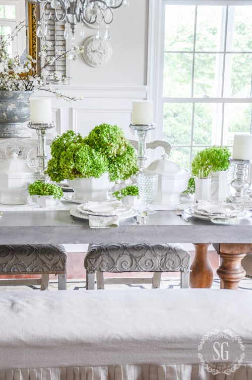 GREEN HYDRANGEAS AND IRONSTONE-An early fall tablescape.