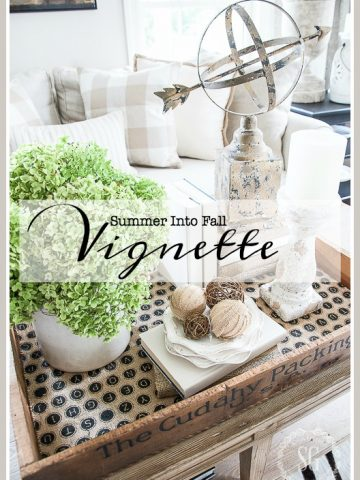 SUMMER INTO FALL VIGNETTE