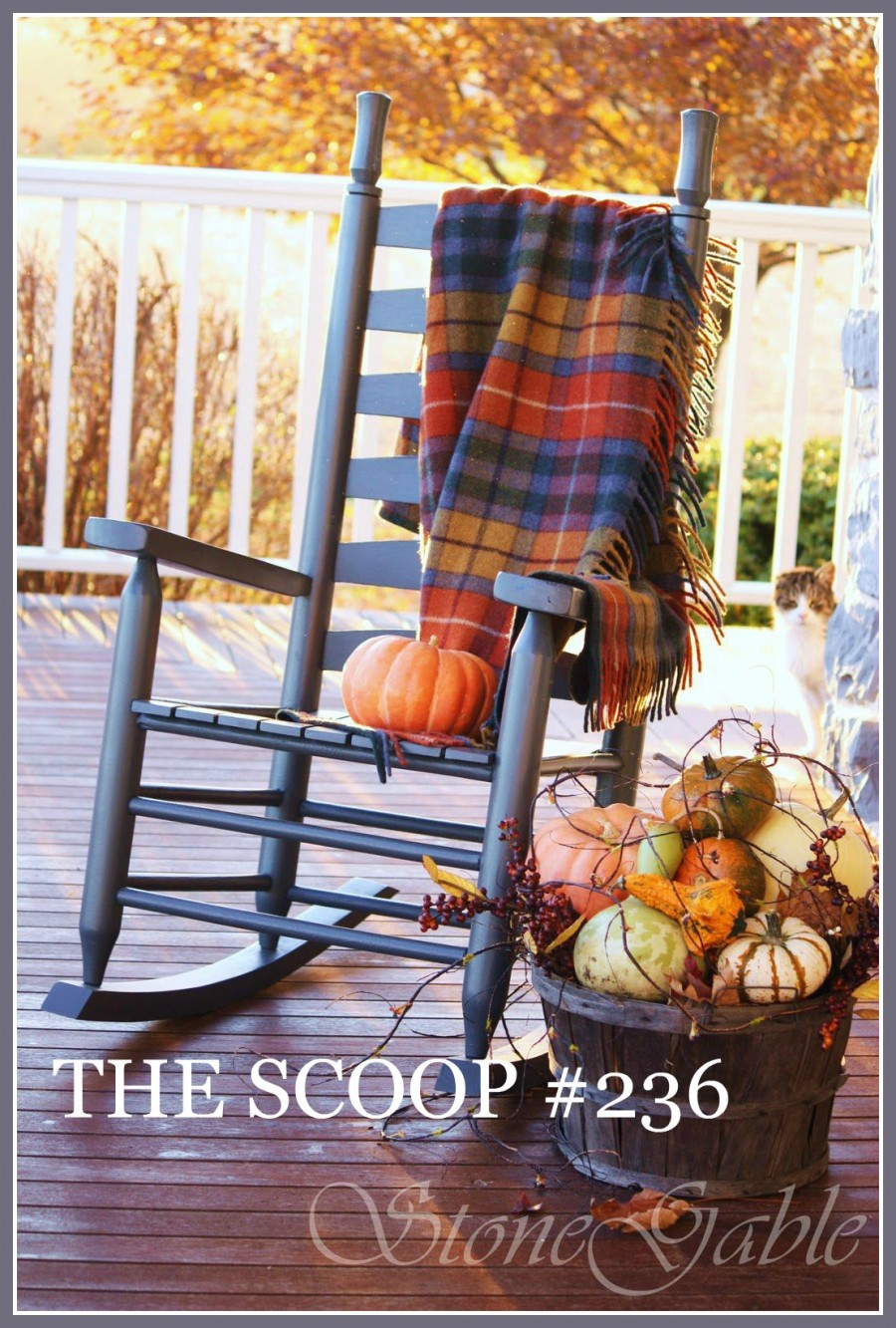 THE SCOOP- The best of home and garden blogs
