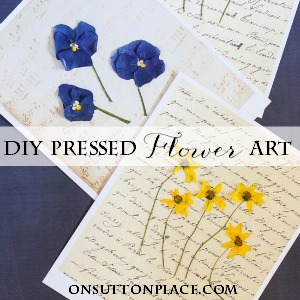 diy pressed flower art on sutton place