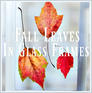 10 MINUTE DECORATING- LEAVES IN FRAMES-pin-stonegableblog-3
