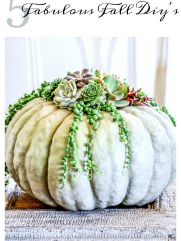 5 FABULOUS FALL DIY'S