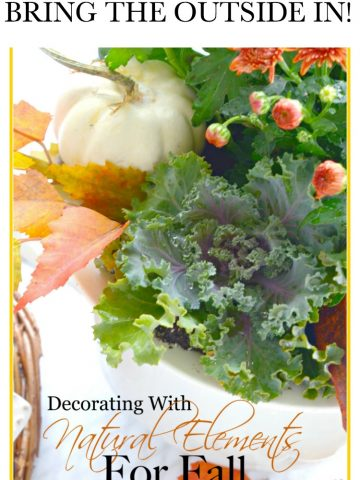 DECORATING WITH NATURAL ELEMENTS FOR FALL