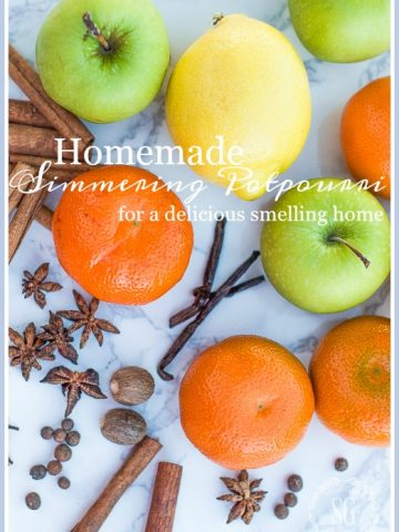 EASY HOMEMADE SIMMERING POTPOURRI