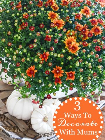 3 FABULOUS WAYS TO DECORATE WITH MUMS