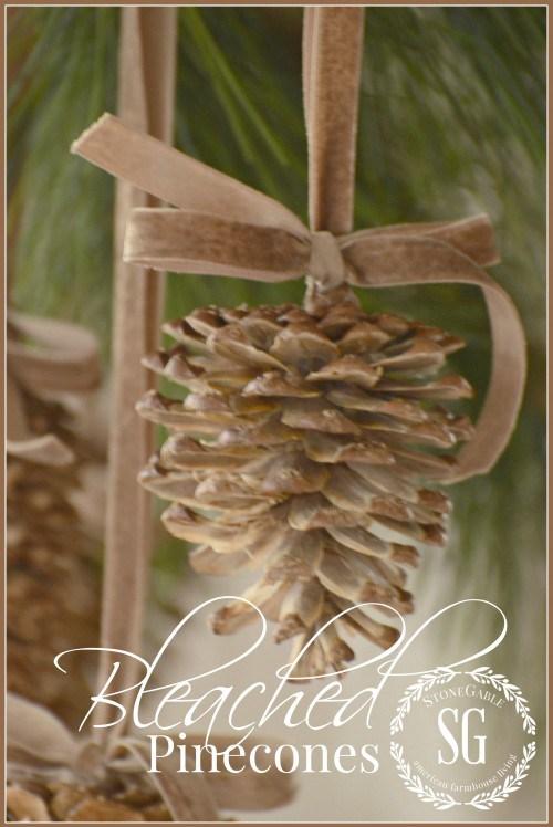 1bleached-pinecones-diy-gorgeous-and-unusual-stonegableblog-e1415312281775