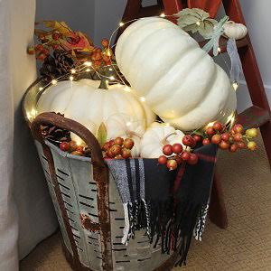 Fall pumpkin olive bucket