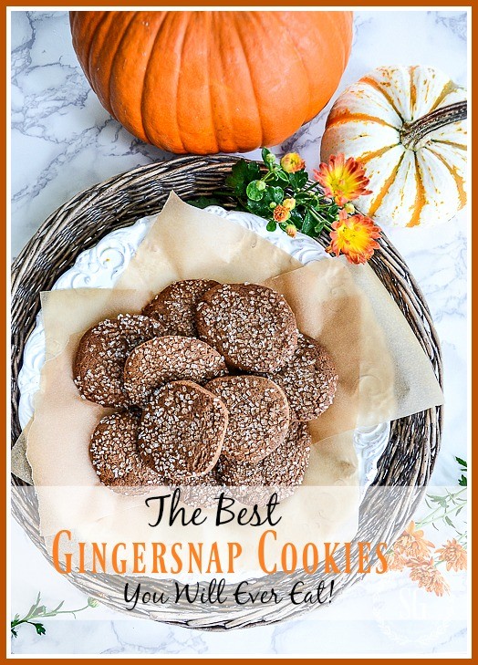 THE BEST GINGERSNAP COOKIES YOU WILL EVER EAT! There are a couple secrets to making amazing gingersnap cooking and I'm sharing them!