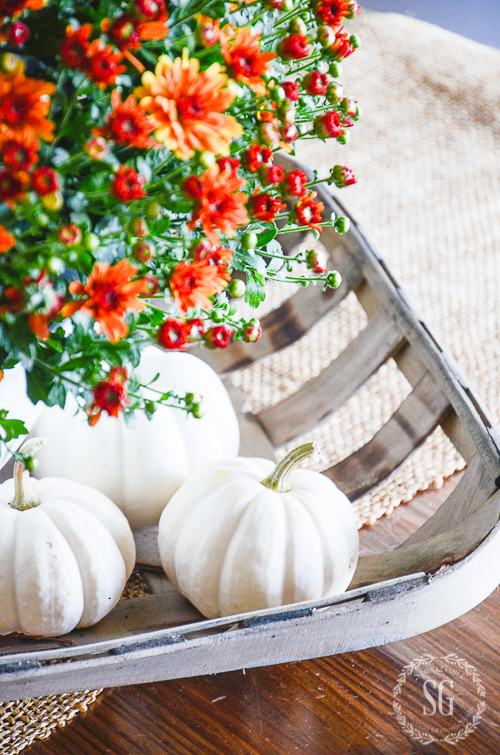 3 WAYS TO DECORATE WITH MUMS-Easy tips for styling beautiful fall mums