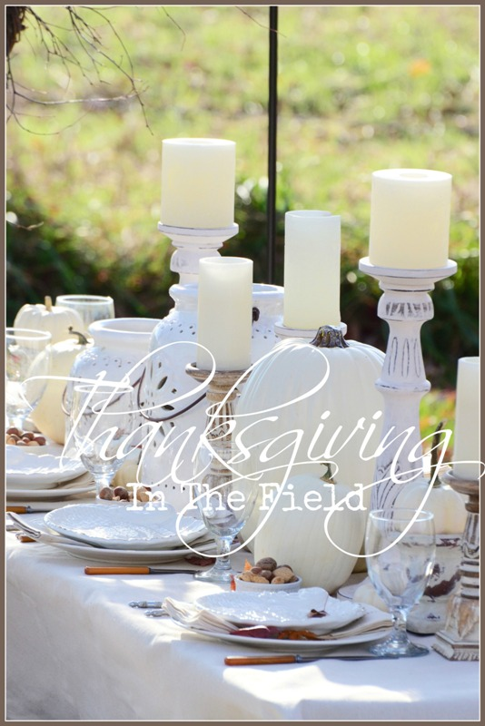 blog-thanksgiving-outdoors-titlepage-stonegableblog-com-copy