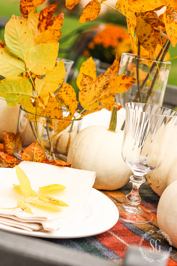 beautiful golden leaves in glass cylinder on a Thanksgiving table