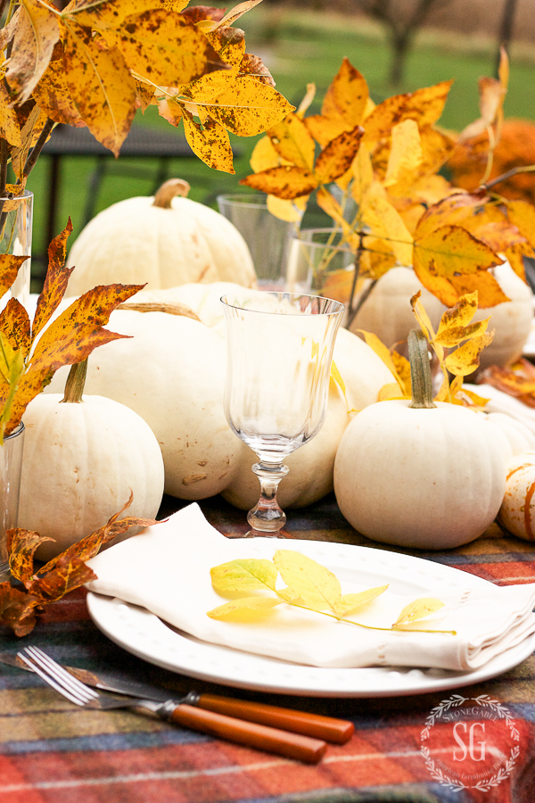 white pumpkins on an outdoor table