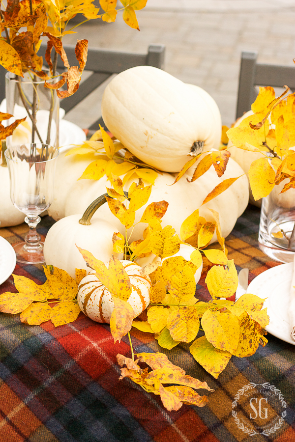 white pumpkins and golden yellow leaves