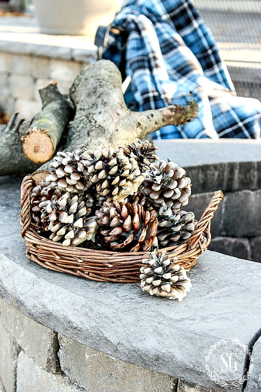PINECONE FIRE STARTERS DIY- A great way to get a roaring fire in the fire pit. They make great gifts too!