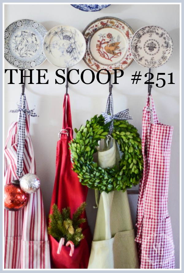 THE SCOOP #251- The best place to find all things home and garden on the web!