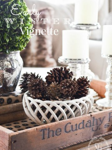 WINTER TRANSITIONAL VIGNETTE
