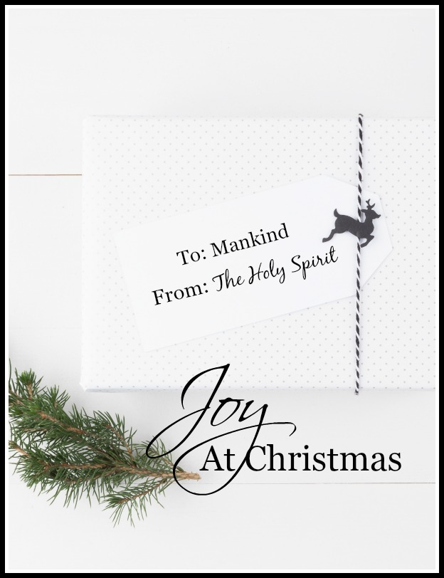 JOY AT CHRISTMAS- Let's find out what true joy at Christmas is